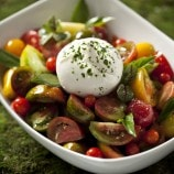 Heirloom and burrata tomato salad