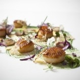 Pan Roasted Diver Scallop With Chive Blossom and Cauliflower and Broccoli Cream