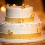 Small two-tier wedding cake with butterflys
