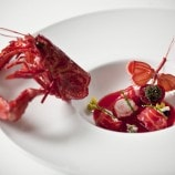 Langoustine with Sauce Nantua and Ostera Caviar